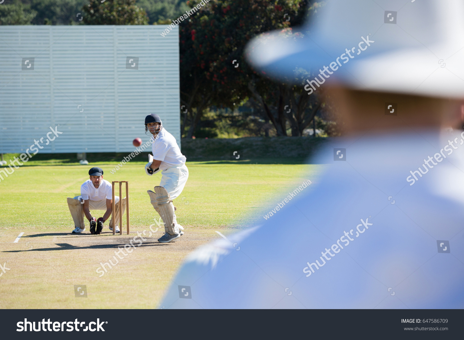 Powerpoint Template  Rear View Of Umpire Standing  Nlompnohu